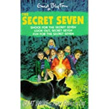 Secret Seven:Fun for the Secret Seven